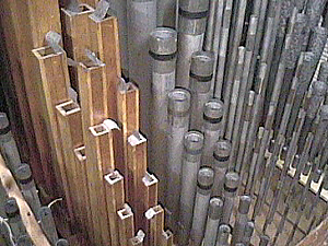 The wooden pipes are Concert Flutes.